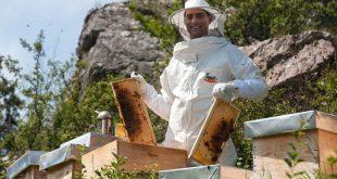 Upoznajte mladog pčelara Marka Ćirovića iz Šavnika