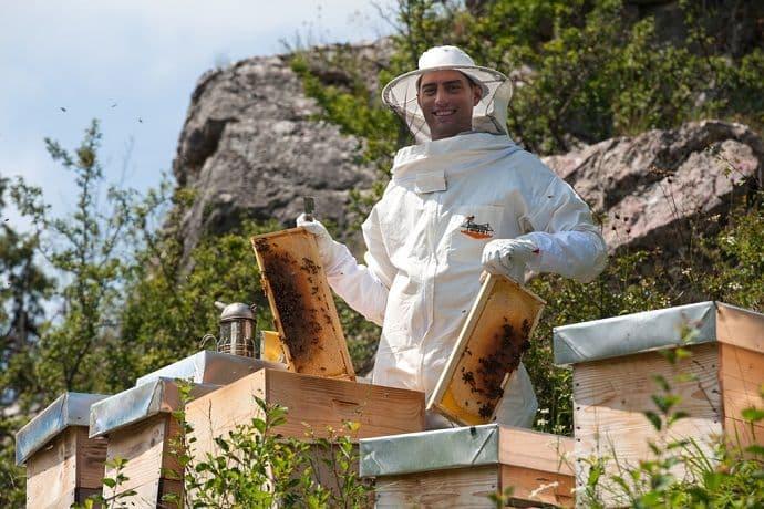 Photo of Upoznajte mladog pčelara Marka Ćirovića iz Šavnika