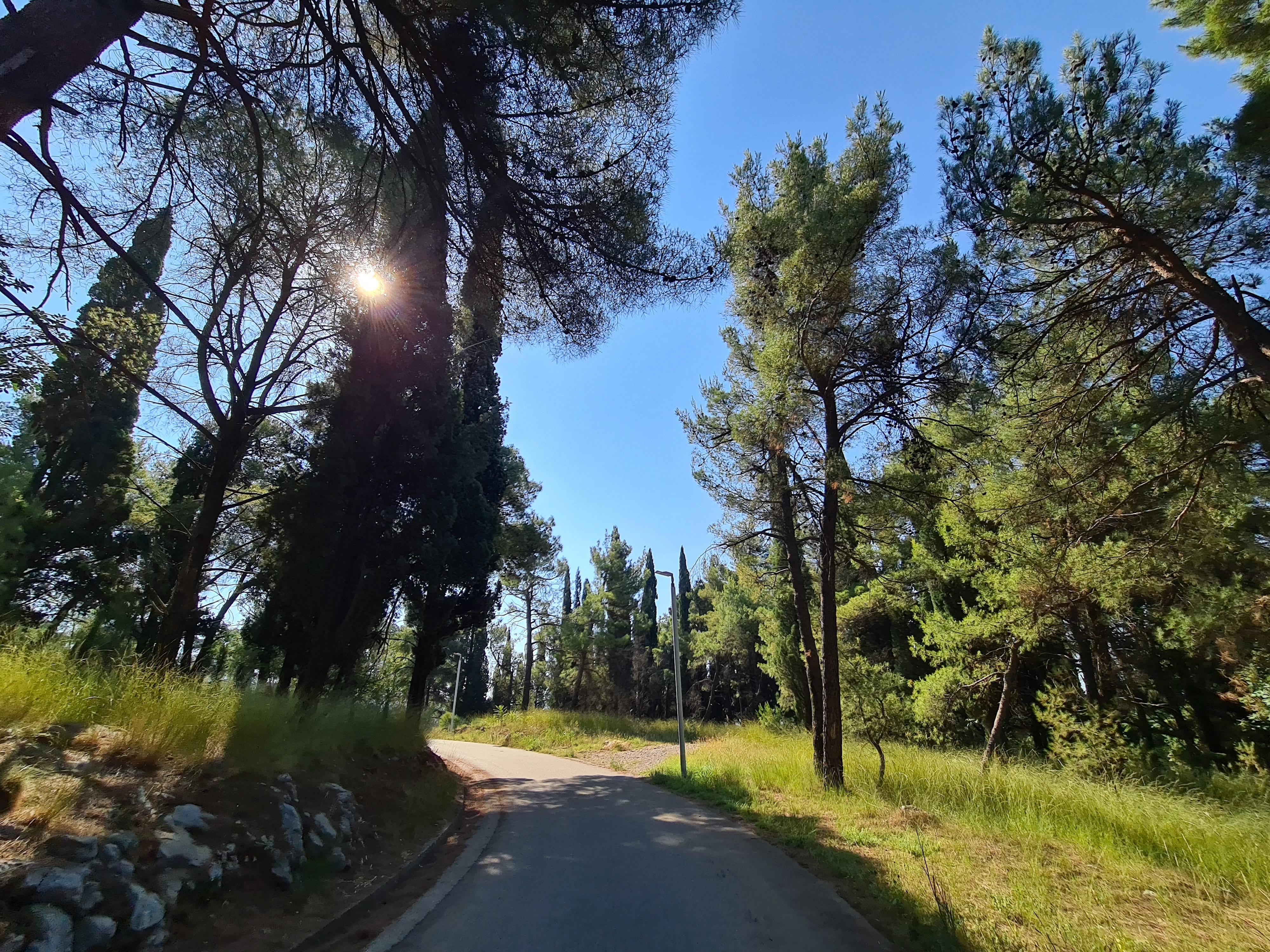 Photo of Park šuma Ljubović dobija novi mobilijar
