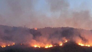 Photo of PODGORICA: Požari u Bratonožićima i Tuzima, vatra prijeti kućama (FOTO)