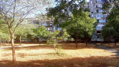 Photo of PODGORICA: U Bloku šest vrućine spržile zelene površine