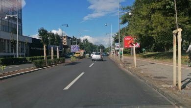 Photo of PODGORICA: Novi drvored na Bulevaru Svetog Petra Cetinjskog (FOTO)