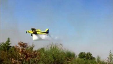 Photo of U centralnom i primorskom dijelu CG danas 11 aktivnih požara (VIDEO)