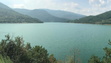 Photo of GRENEL ODUŠEVLJEN: Gazivode ili Jezero Tramp?