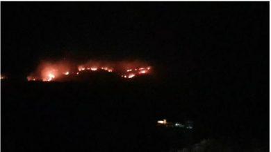 Photo of JANKOVIĆ: Požar u Kučima pod kontrolom, do večeri će biti ugašen