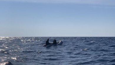 Photo of DVA UKRAJINCA SPASENA U VODAMA KOD ULCINJA: Bili u malom čamcu, pronašli ih iscrpljene